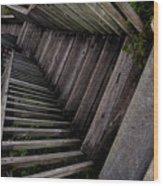 Vertigo - Stairs To The Unknown Wood Print