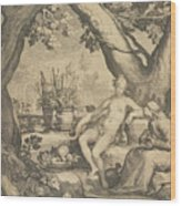 Vertumnus And Pomona Wood Print