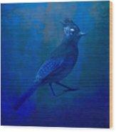 Very Blue Jay Wood Print