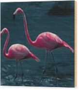 Very Pink Flamingos Wood Print