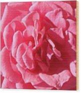 Very Pink Mini Wood Print