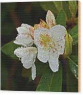 Very Wet Flower Wood Print
