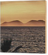 vest i Vlora. Sazan Island Wood Print