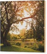 Veterans Park Lagoon Wood Print