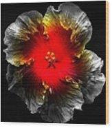Vibrant Flower Series Wood Print by Jen White
