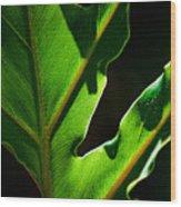 Vibrant Green Wood Print