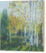 Vibrant Landscape Paintings - Arizona Aspens And Pine Trees - Virgilla Art Wood Print