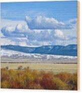 Vibrant Montana Wood Print
