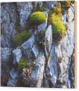 Vibrant Moss Wood Print
