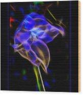 Vibrant Orchid Wood Print