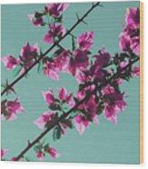 Vibrant Pink Flowers Bloom Floral Background Wood Print