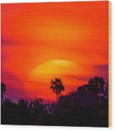 Vibrant Spring Sunset Wood Print