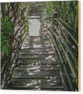 Vichy Springs In Ukiah, California Wood Print