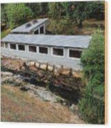Vichy Springs Resort Carbonated Hot Springs Wood Print