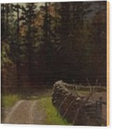 Victor Coleman Anderson  1882  1937 Road By The Woods Wood Print