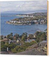 Victoria Coastline Wood Print