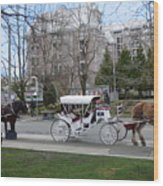 Victoria Horse Carriages Wood Print