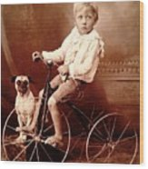 Victorian Boy With Pug Dog And Tricycle Circa 1900 Wood Print