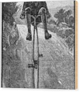 Victorian Gentleman On A Penny-farthing Wood Print