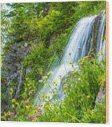 Vidae Falls, Oregon Wood Print