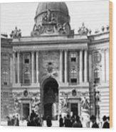 Vienna Austria - Imperial Palace - C 1902 Wood Print