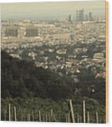 Vienna From The Vineyard Wood Print