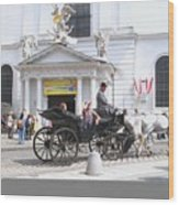 Vienna Horse And Carriage Wood Print