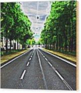 Vienna Ringstrasse Wood Print