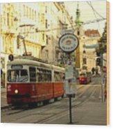 Vienna Streetcar Wood Print