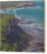 View Across Frazer Beach  Nsw Australia Wood Print