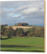 View At The Dalmahoy Wood Print