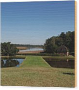 View Down To The Ashley River At Middleton Place Plantation Charleston Wood Print