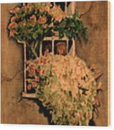 View From A Roman Window Wood Print