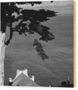 View From Alcatraz Wood Print