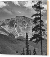 View From Atop Winter Park Mountain 2 Wood Print