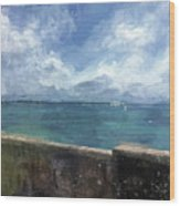 View From Bermuda Naval Fort Wood Print