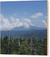 View From Clingman's Dome Wood Print