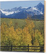 View From Hwy 62, Ouray County, Co Wood Print