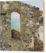 View From Doria Castle In Portovenere Italy Wood Print