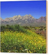 View From Dripping Springs Rd Wood Print