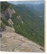 View From Exclamation Point At Chimney Rock Nc Wood Print