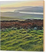 View From Grianan Fort Wood Print