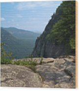 View From Hickory Nut Gorge Nc Wood Print