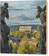 View From Kuks Hospital - Czechia Wood Print