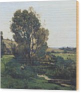 View From Moncel-sur-seine Wood Print
