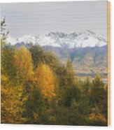 View From My Studio October 2008 Wood Print