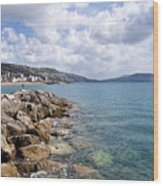View From North Wall - Lyme Regis Wood Print