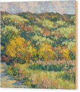 View From Pine Plains Wood Print