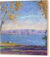 View From Presque Isle Wood Print by Michael Camp