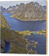 View From Reinebringen Wood Print